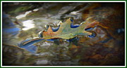 Autumn Leaf On Water Metal Prints - Afloat Metal Print by Greg Thiemeyer