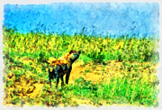 Masai Paintings - Africa hyena by George Rossidis