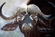 Cape Buffalo Paintings - African Buffalo/Cape Buffalo by Stejanus Fine Artist
