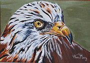 Swift Painting Originals - African eagle by Hiten Mistry