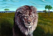 African Lion Painting Framed Prints - African Lion Framed Print by Tom Blodgett Jr