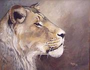 African Lion Painting Framed Prints - African Lioness Framed Print by Suzanne Schaefer