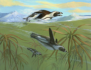 ACE Coinage painting by Michael Rothman - African Penguins