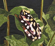 Fabric Collage Tapestries Textiles Posters - African Reed Frog Poster by Lynda K Boardman
