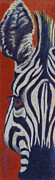 Zebra Pastels - African Stripes by Tracy L Teeter