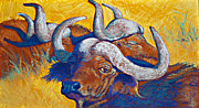 Cattle Pastels Framed Prints - African Sun Framed Print by Tracy L Teeter