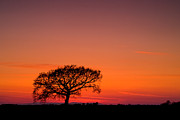 Landscape Photos - African sunset by Davorin Mance
