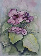 African Violets Print by Rebecca Matthews