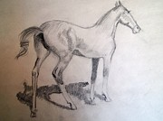 Remington Drawings - After Remington 2 by Nancy Kane Chapman