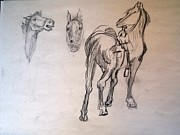 Remington Drawings - After Remington 3 by Nancy Kane Chapman