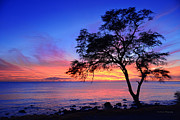 Eric Evans - After Sunset at Kahe...