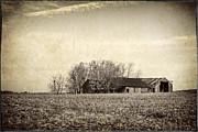Jeff Burton - After the Harvest