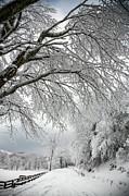 After The Snow Storm Print by John Haldane