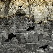 Ravens In Graveyard Prints - Aftermath Print by Gothicolors And Crows