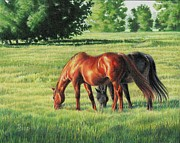 Colored Pencil Landscape Drawings Drawings - Afternoon Graze by Carrie L Lewis