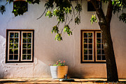 Stellenbosch Photo Posters - Afternoon Light Warm Poster by Rick Bragan