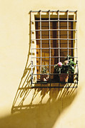 Afternoon Shadow In Montepulciano Print by Clint Brewer