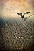 Against The Tide Print by Ellen Cotton