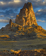 Agathla Peak Prints - Agathla Peak Monument Valley Print by Tim Fitzharris