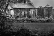 Old Barns Acrylic Prints - Aged Beauty Acrylic Print by Bill  Wakeley