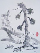 Roberto Prusso - Aged Pine Tree