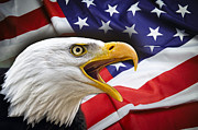 Aggressive Eagle And United States Flag Print by Daniel Hagerman