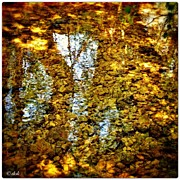 Impressionism Art - #agua #water #reflections #beauty by Dokusho Villalba