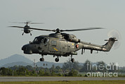 Featured Metal Prints - Agustawestland Lynx Helicopters Metal Print by Remo Guidi