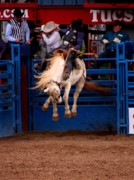 Rodeos Photo Posters - Airborne Poster by Joe Kozlowski
