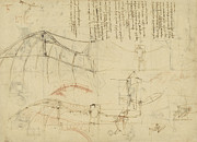 Canvas  Drawings Prints - Aircraft the machine has been reduced to the simplest shape Print by Leonardo Da Vinci