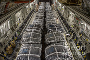 Pallet Metal Prints - Airmen Prepare Pallets On A C-17 Metal Print by Stocktrek Images