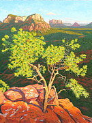 Pinion Paintings - Airport Mesa Vortex - Sedona by Steve Simon