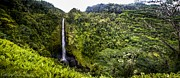 Franks Posters - Akaka Falls Poster by Hastings Franks