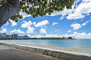 Ala Moana Metal Prints - Ala Moana Beach Park Metal Print by Leigh Anne Meeks