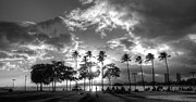 Ala Moana Metal Prints - Ala Moana Beach Park Metal Print by Tin Lung Chao