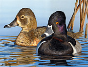 Jim Denney - Alabama Duck Stamp