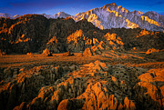 Alabama Hills Posters - Alabama Hills Poster by Inge Johnsson