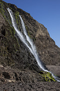 Marin County Photo Posters - Alamere Falls Poster by Garry Gay