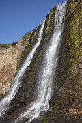Falls Art - Alamere Falls Pacific Coast by Garry Gay