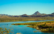 Rawhide And Buckskin Moiuntains Prints - Alamo Lake Print by Robert Bales