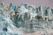Glaciers Prints - Alaska Glaciers Print by Anonymous