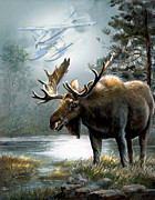 Moos Paintings - Alaska moose with floatplane by Gina Femrite