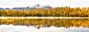Sam Amato - Alaska Morning Autumn...