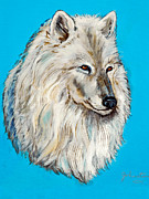 Ebay Framed Prints - Alaska White Wolf Framed Print by Nadine and Bob Johnston