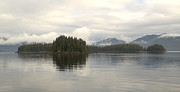 All - Alaskan Island Reflection by Tom Wurl