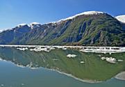 All - Alaskan Reflection by Tom Wurl