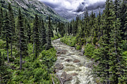 JRP Photography - Alaskan Wilderness