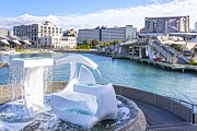 Albatross Prints - Albatross Fountain Wellington New Zealand Print by Colin and Linda McKie