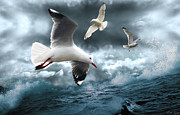 Stormy Digital Art Metal Prints - Albatross Metal Print by Linda Lees