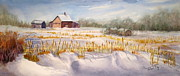Hay Bales Originals - Alberta Winter Panorama by Mohamed Hirji